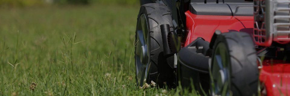 Het gras ziet altijd groener aan uw kant van de haag