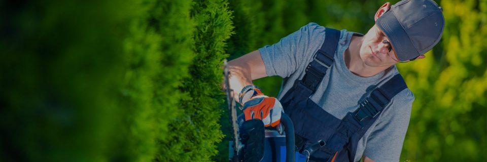 Onderhoud van uw tuin zoals het moet